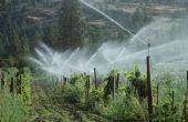 Wat oorzaken Rain Bird Sprinkler kleppen lekken?