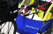 Hoe te te nemen van uw hond op een fietstocht