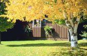Huis remedie voor Bug Spray voor bomen
