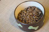 Voeding voor honden met de ziekte van Cushing