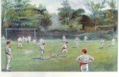 Hoe maak je een grasmat Cricket Pitch?