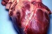 Bijwerkingen van hartkloppingen