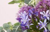 Hoe maak je een wegwerp Floral kikker