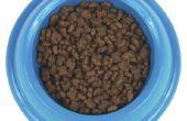 Hoe te houden van de Bugs uit voeding voor de kat