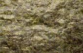 Hoe maak je zeewier poeder