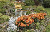 Welke bloemen bloeien in September?