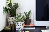 Liven omhoog uw bureau met dit eenvoudig DIY