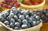 Groente-, Fruit- en moer dieet