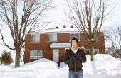Hoe te repareren van heggen met sneeuw schade