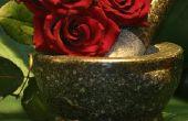 Seizoensgebonden Valentijn commerciële Window Display ideeën
