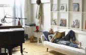 Hoe krijg ik een geur uit een Vinyl Couch