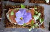 11 bloemen die je nu zou moeten eten