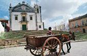 19e eeuw paard & Wagons