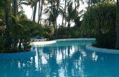 De beste struiken te zetten rond een zwembad