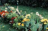 Hoe krijg ik een tuin klaar voor de Winter