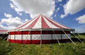 Hoe voor het hosten van een volwassen Circus thema Party
