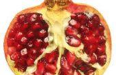 Hoe bemesten van granaatappel bomen