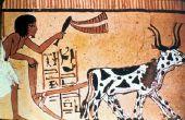 Het dagelijks leven van de oude Egyptische landbouwers