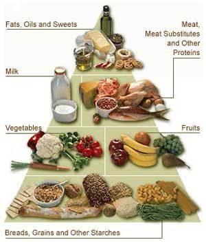 1500 calorie dieet