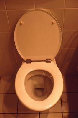 How To Get Sleutels Uit Het Toilet Gespoeld Wikisailor Com