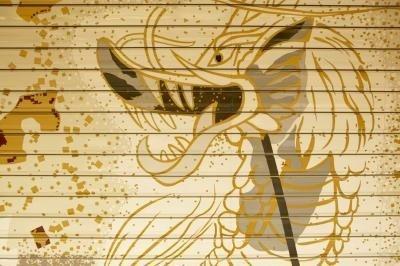 hebben draken bestaan