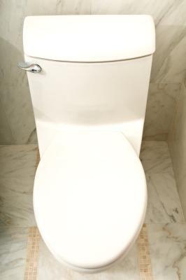 Wat Is De Paarse Schimmel En Zwarte Schimmel Onder Het Toilet Op