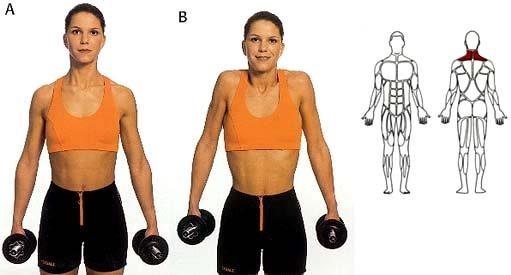 spieren nek schouder