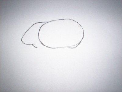 cirkel tekenen perspectief