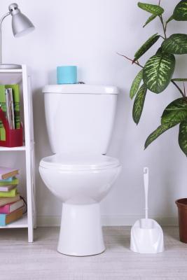 Kleine Bruine Wormen In De Toiletten Wikisailor Com